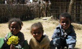 Микрофлора африканцев – золотая жила в борьбе с аллергией