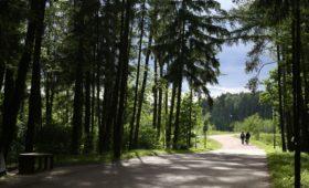 Компания Абрамовича выкупила бывшую землю МЧС у Мещерского парка