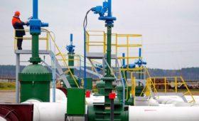 Владелец нефтяного терминала частично признал вину в загрязнении «Дружбы»