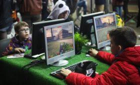 В Совфеде предложили маркировать онлайн-игры из-за стрельбы в школах