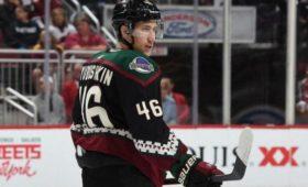 Хоккеист Любушкин продлил сотрудничество с«Аризоной»