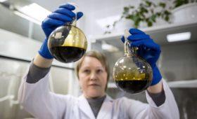 Оператор «Дружбы» обвинил «Транснефть» в помехах доступу к пробам нефти