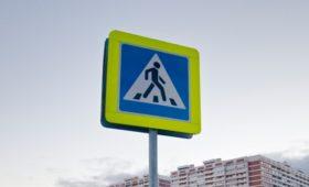 ГИБДД проиграла суд по уменьшенным дорожным знакам