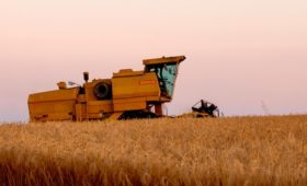 Агрохолдинг Евгения Туголукова проведет IPO в Сингапуре
