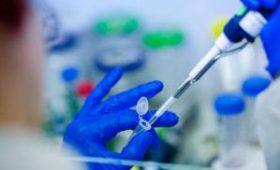 Врачи раскрыли, чем опасны уколы стволовых клеток