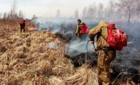 СПЧ весной предупредил власти Иркутской области о будущих пожарах