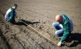Власти Украины решили отменить мораторий на продажу земель