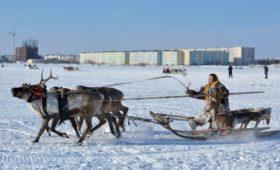 Ямал стал лидером среди регионов по зарплатам чиновников