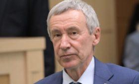 В Совфеде обвинили «зарубежные силы» в провокациях на акции через YouTube