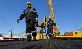 «Роснефть» перевела новые экспортные контракты из долларов в евро