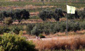 Израиль начал наносить удары по Ливану после обстрелов своей территории