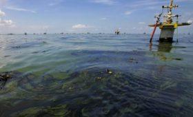 Датский фонд продаст акции «Роснефти», ExxonMobil и BP ради экологии