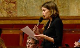 Французские депутаты назвали сроки разморозки работы комиссии с Россией