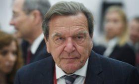 «Роснефть» посоветовала «Транснефти» извиниться перед Шредером