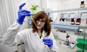 «Транснефть» раскрыла статистику содержания хлора в нефти «Роснефти»
