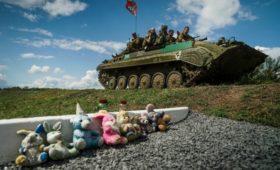 Голландские депутаты согласились изучить роль Украины в гибели MH-17