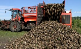 Правительству предложили ввести минимальные цены на сахар