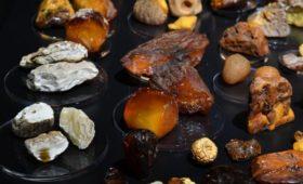 Янтарь оказался самым востребованным товаром у китайских туристов