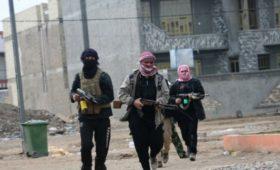 В МВД Турции пообещали отослать пленных боевиков ИГ в Европу