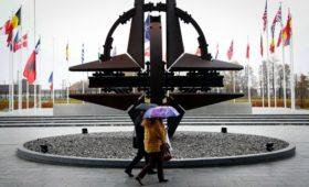Как НАТО собирается лечить «смерть мозга»