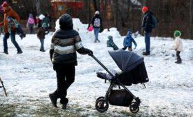 СПЧ передал Путину предложения об изъятии родителей из семьи