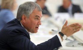 Володин заявил о просьбе Венгрии помочь защитить диаспору на Украине