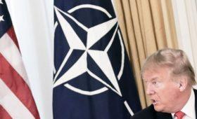 Трамп заявил об отколовшейся от НАТО Франции