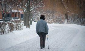 Правительство не включило закон о новых пенсиях в свой план на год