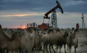 Казахстан ответил на просьбу Белоруссии поставить нефть взамен российской