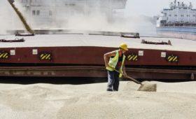 Минсельхоз предложил ограничить экспорт зерновых за пределы ЕАЭС