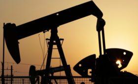 Цены на нефть за ночь упали на $14 за баррель