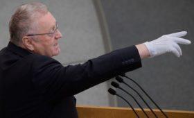 Жириновский предложил провести досрочные парламентские выборы