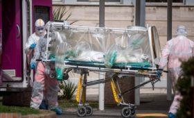 Путин пообещал Италии помощь в борьбе в коронавирусом